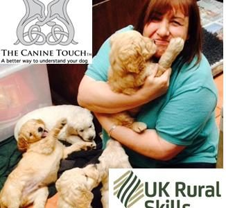Canine Touch Practitioner Route Course – Accredited by UK Rural Skills